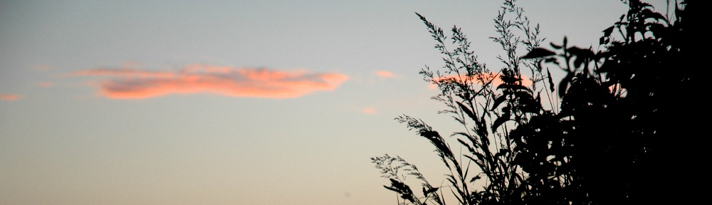 Callestick Cloud by Nicola Bathe