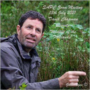 """Wildlife of the Falklands"" with David Chapman @ Zoom"