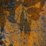 Abstract-Highly Commended-Liz Barker-Shadowland